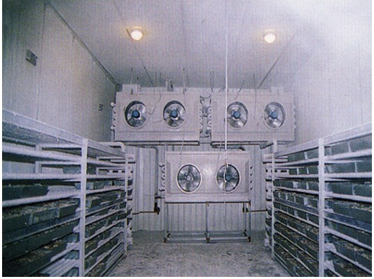 Quick-freezing cold storage equipment